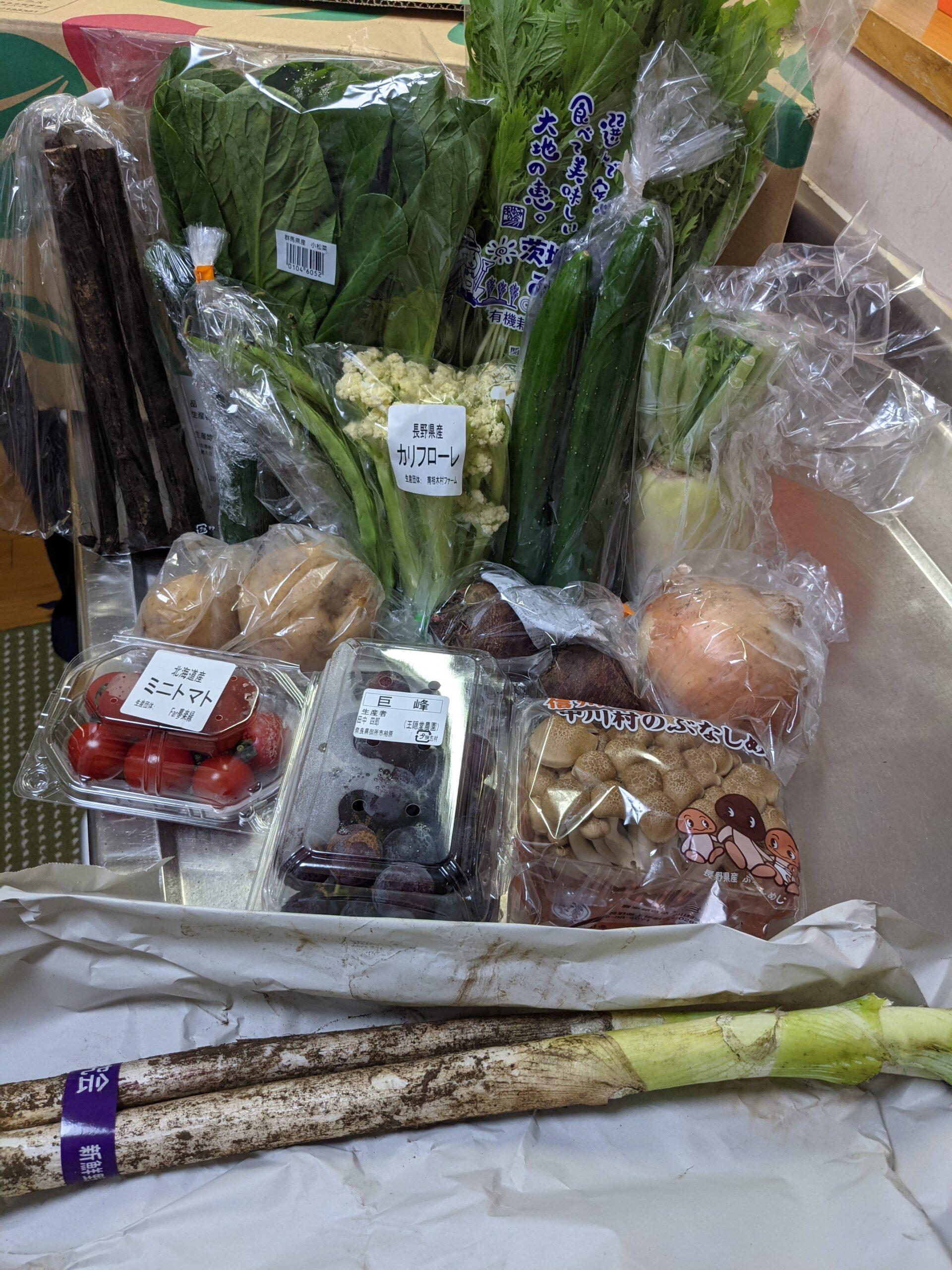 今週のらでぃっしゅぼーや 届いたお野菜たち